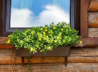 5 Benefits of New Windows